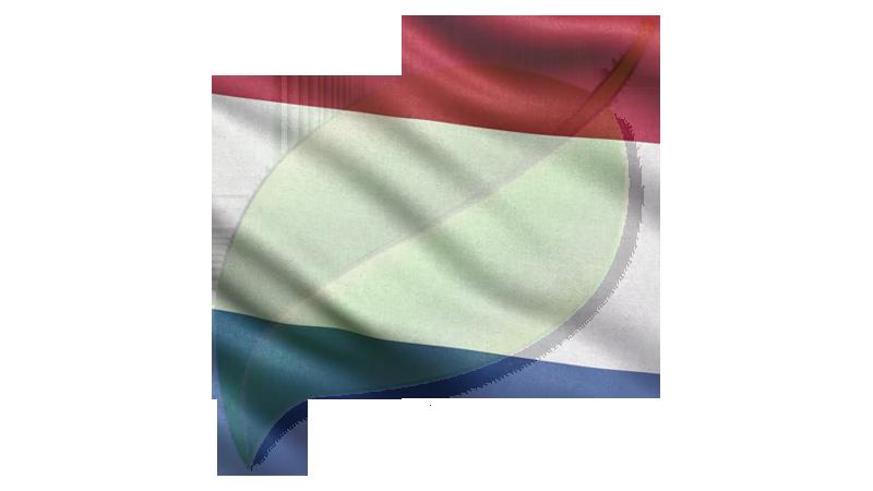 Dutch Flag Genealogy Leaf