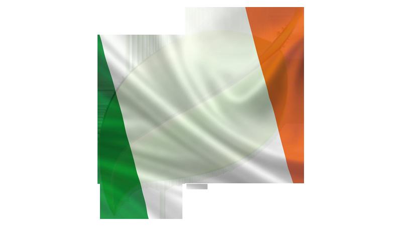 Irish Flag leaf
